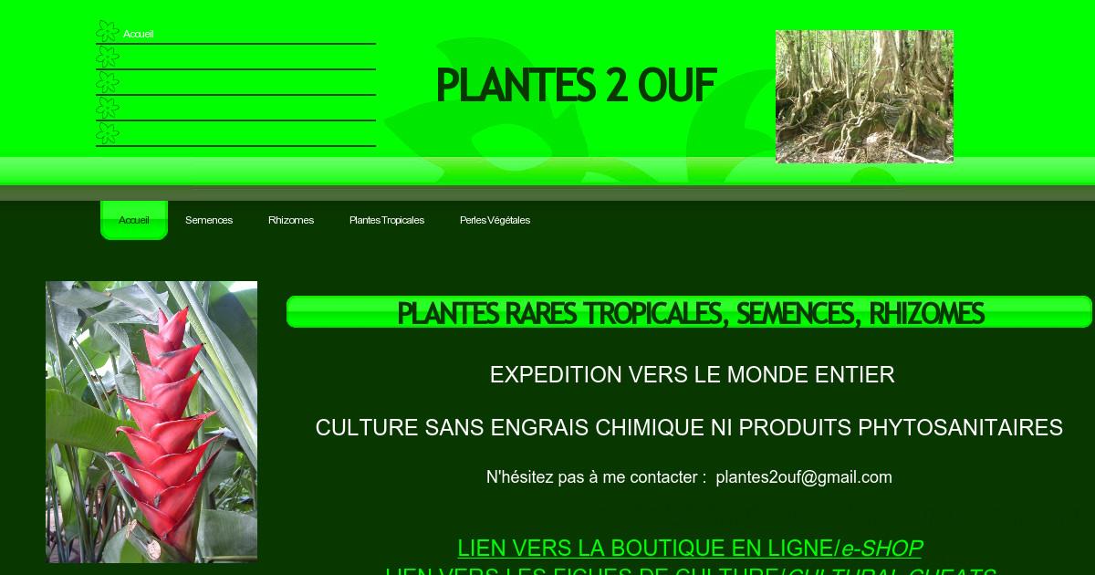 Plantes 2 ouf accueil for Plantes par internet